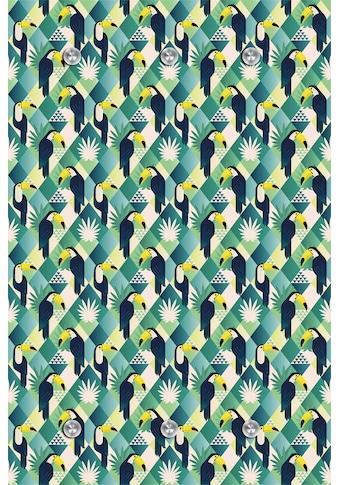 queence Garderobe »Papagei« kaufen