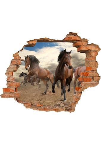 Conni Oberkircher´s Wandsticker »Horses«, selbstklebend kaufen
