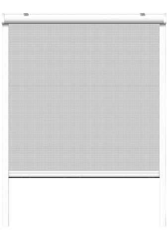 SCHELLENBERG Set: Insektenschutz - Rollo BxH: 130x160 cm, Rahmen weiß kaufen