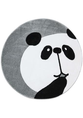 Carpet City Kinderteppich »Bueno Kids 1389«, rund, 13 mm Höhe, Panda Bär in pastell... kaufen