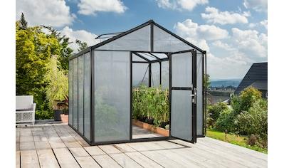 Vitavia Gewächshaus »Zeus 8100« kaufen