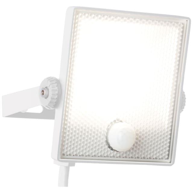 Brilliant Leuchten Dryden LED Außenwandstrahler 13cm Bewegungsmelder weiß