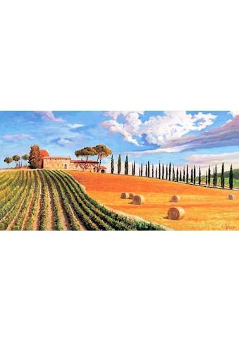 Home affaire Kunstdruck »ADRIANO GALASSO / Colline toscane«, (1 St.) kaufen
