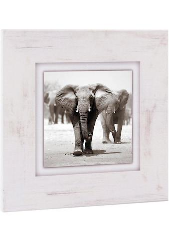 Home affaire Holzbild »Elefanten«, 40/40 cm kaufen