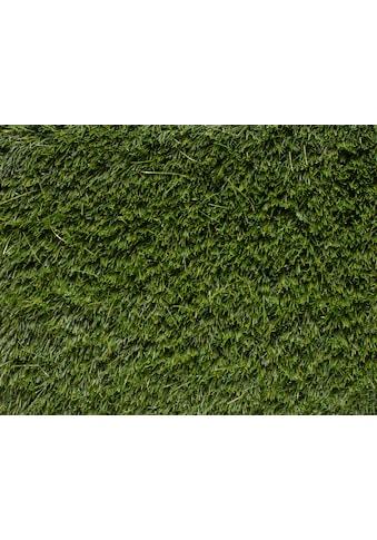 Andiamo Kunstrasen »La Palma«, rechteckig, 33 mm Höhe, Meterware Breite 400 cm, uni,... kaufen