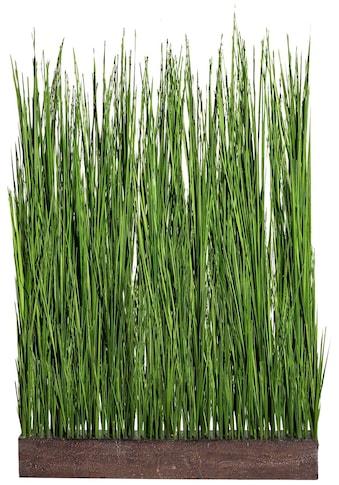 Creativ green Kunstgras »Gras Raumteiler« kaufen
