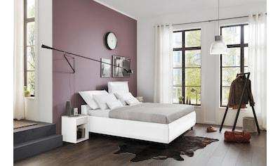 JETTE Betten Polsterbett »#106 Function«, 180 cm, mit Bettkasten kaufen