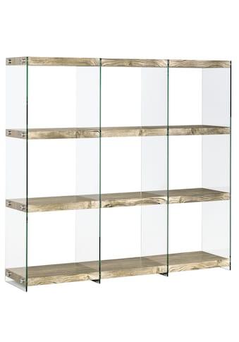 Regal , mit transparenten Seitenwänden kaufen