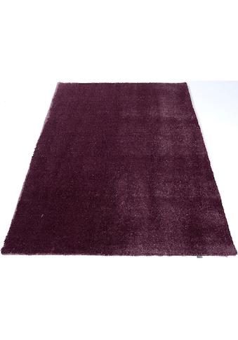 Hochflor - Teppich, »Solo«, GALLERY M, rechteckig, Höhe 30 mm, maschinell gewebt kaufen