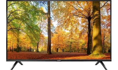 """Thomson LED-Fernseher »32HD3306X1«, 80 cm/32 """", HD ready kaufen"""