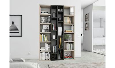 fif möbel Raumteilerregal »TOR391-1«, Breite 145 cm kaufen