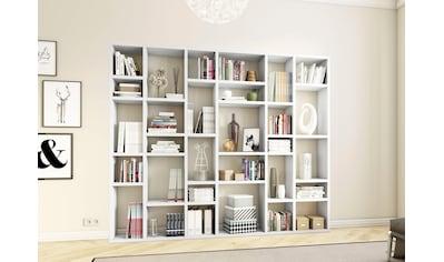 fif möbel Raumteilerregal »TORO 381«, Breite 260 cm kaufen