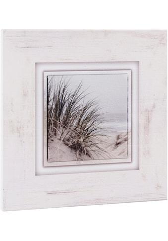Home affaire Holzbild »Gräser am Strand«, 40/40 cm kaufen
