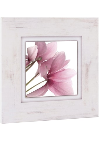 Home affaire Holzbild »Rosa Veilchen«, 40/40 cm kaufen