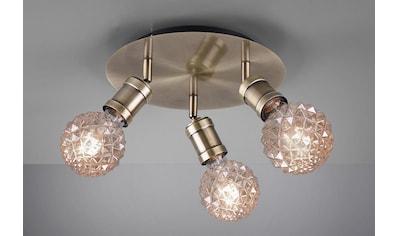 TRIO Leuchten Deckenleuchte »Carl«, E27, Deckenlampe kaufen
