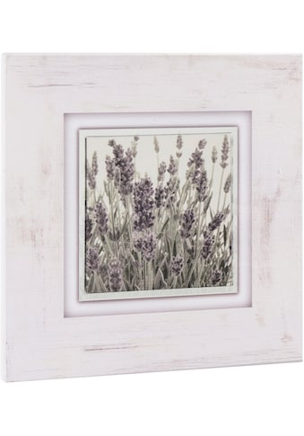 Home affaire Holzbild »Lavendel«, 40/40 cm kaufen