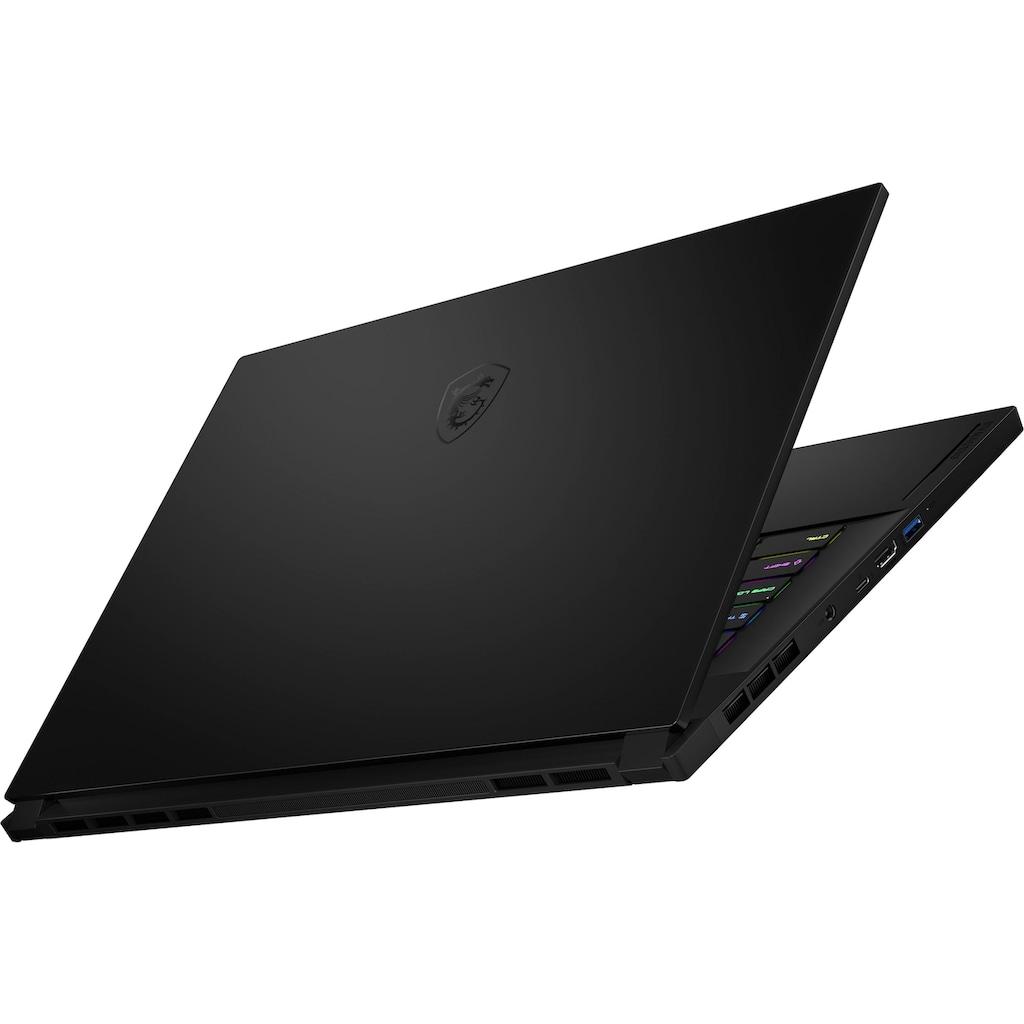 MSI Notebook »GS66 Stealth 10UG-275«, ( 1000 GB SSD)