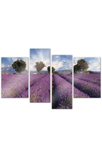 Wall-Art Mehrteilige Bilder »Lavendel Blumenfeld (4-teilig)«, (Set, 4 St.) kaufen