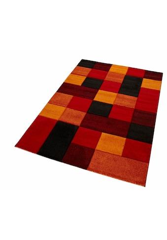 Teppich, »DRONNE«, merinos, rechteckig, Höhe 13 mm, maschinell gewebt kaufen