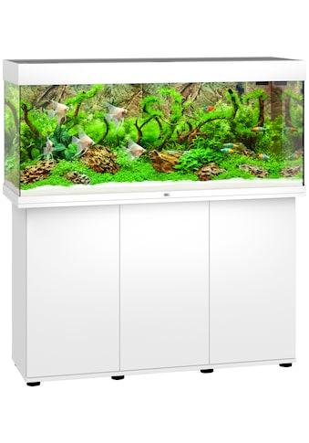 JUWEL AQUARIEN Aquarien-Set »Rio 240 LED«, 240 Liter, Gesamtmaß BxTxH: 121x41x128 cm kaufen