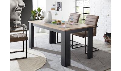my home Esstisch »BRÜGGE«, Mit einer dekorativen Rahmenoptik kaufen