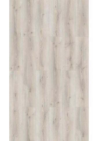 PARADOR Laminat »Basic 600«, Eiche Askada weiß gekälkt Naturstruktur kaufen