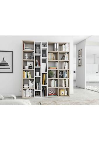 fif möbel Raumteilerregal »TOR390-1«, Breite 190 cm kaufen