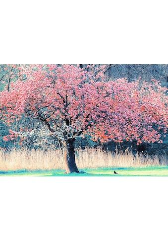 Home affaire Leinwandbild »L. VAN DE GOORS / Ich und mein Baum«, (1 St.) kaufen