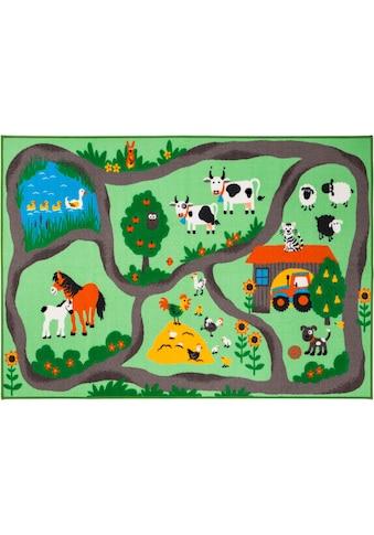 Kinderteppich, »Bauernhof«, Andiamo, rechteckig, Höhe 6 mm, maschinell getuftet kaufen