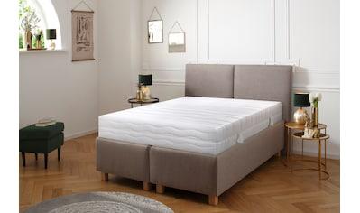 DELAVITA Komfortschaummatratze »Wismar«, 28 cm cm hoch, (1 St.), Extra hoher... kaufen